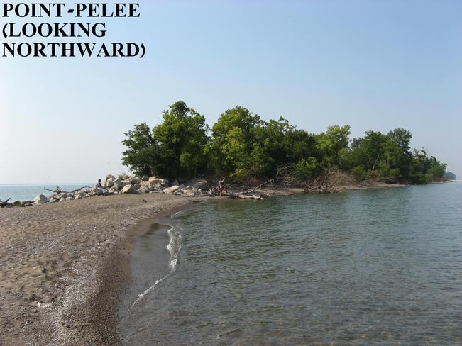 Point Pelee- ont. Point Pelee, Ontario Canada