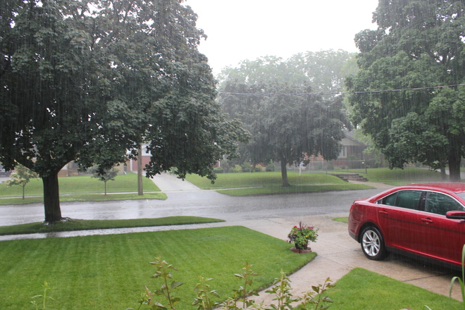 That's a lot of rain! Kitchener, Ontario Canada