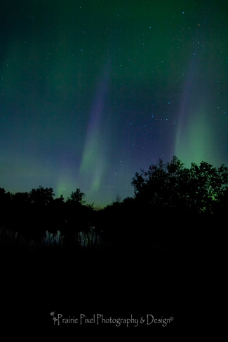 Northern LightsShow Regina, Saskatchewan Canada