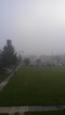A Foggy Morning In Red Deer Red Deer, Alberta Canada