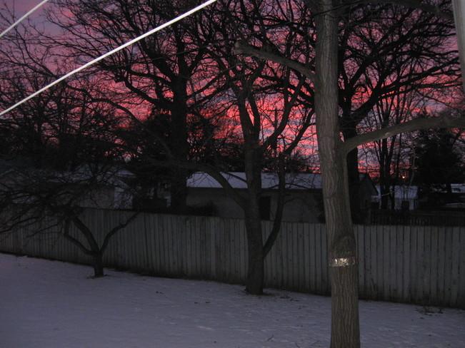 Sunset Thru Trees