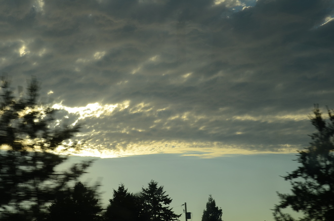 Clouds just a relief for scorching heat Greater Vancouver, British Columbia Canada