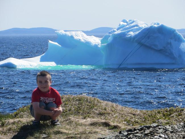 iceburg Goose Cove East, Newfoundland and Labrador Canada