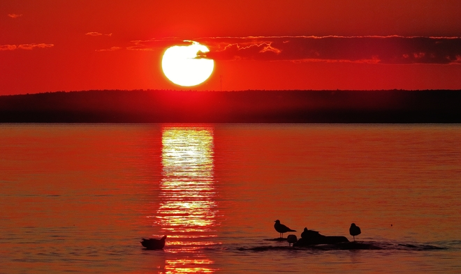 Sun heads for the hills as waterfowl relax. North Bay, Ontario Canada