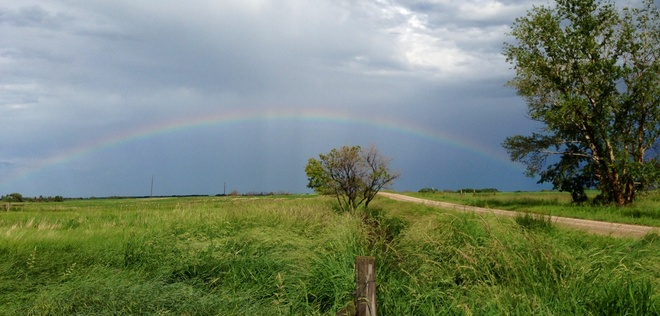 rainbow Young, Saskatchewan Canada