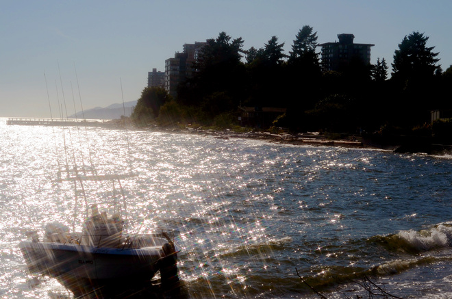 Like diamonds scattered at the sea Greater Vancouver, British Columbia Canada