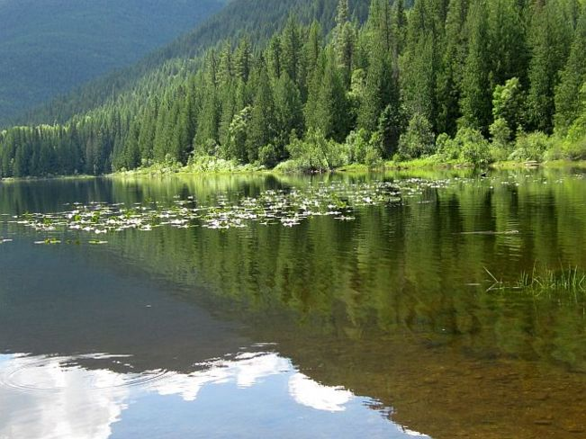 Reflections on a beautiful lake. Slocan, British Columbia Canada