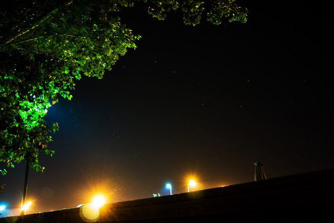 Big Dipper under the boughs,