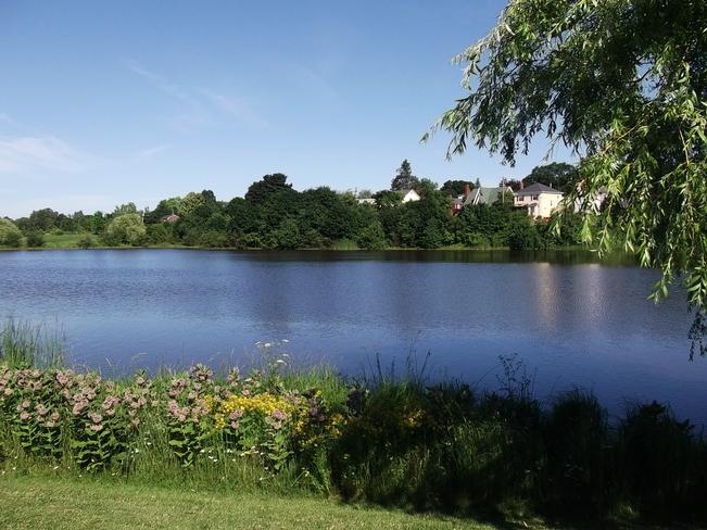 Jones Lake.