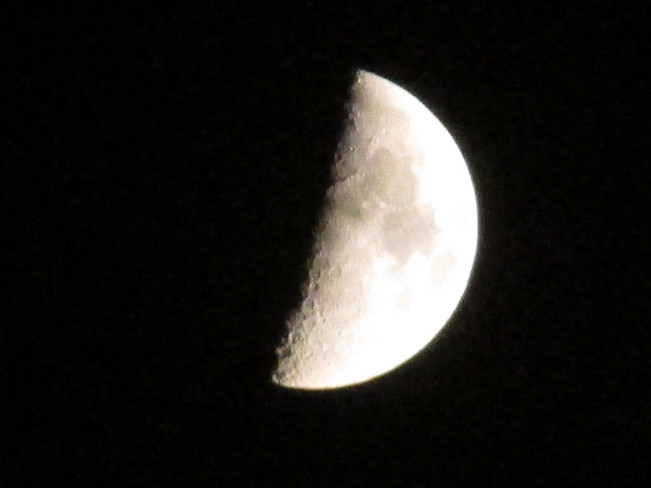First Quarter moon phase Moncton, New Brunswick Canada