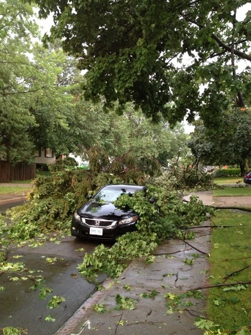 aftermath to storm Hamilton, Ontario Canada