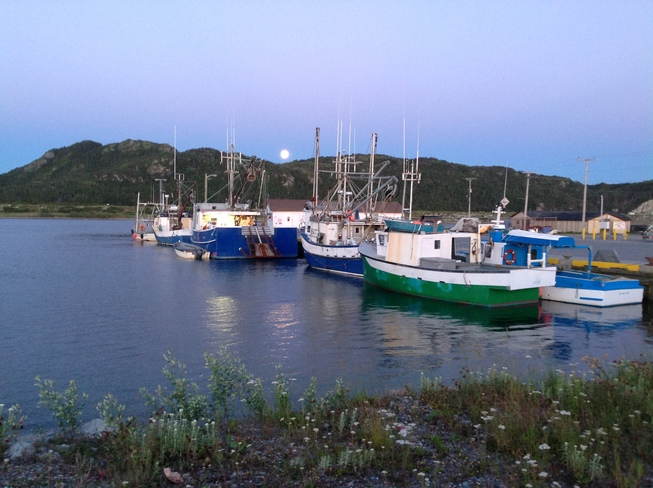 Moon Arising over Little Port Harmon Stephenville, Newfoundland and Labrador Canada