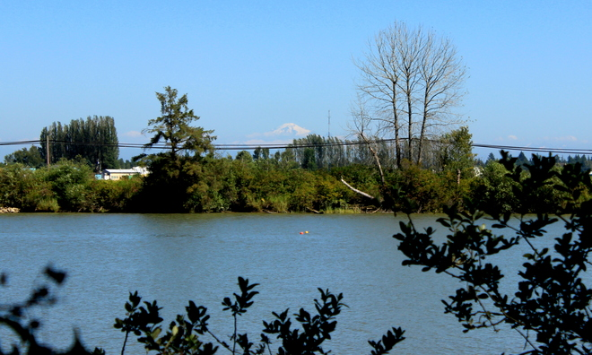 mt baker from deas island Delta, British Columbia Canada