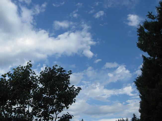blue skies Surrey, British Columbia Canada