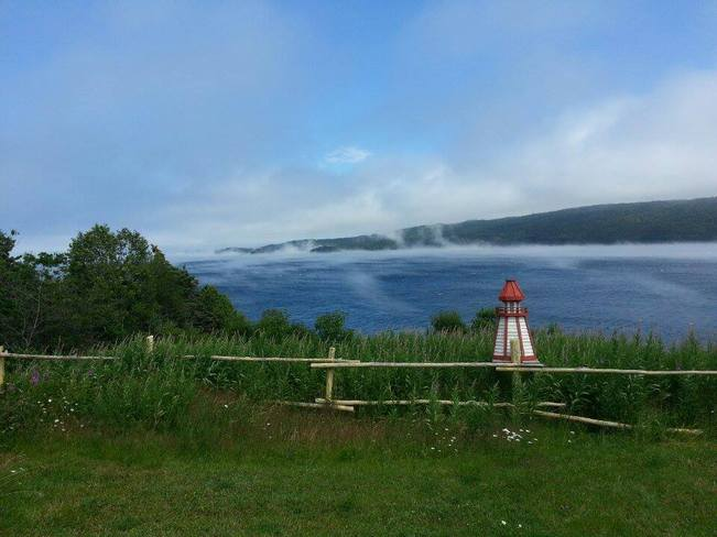 Mist on the water Chapel Arm, Newfoundland and Labrador Canada