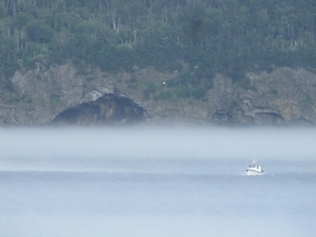 Fog on the Bay Norman's Cove-Long Cove, Newfoundland and Labrador Canada
