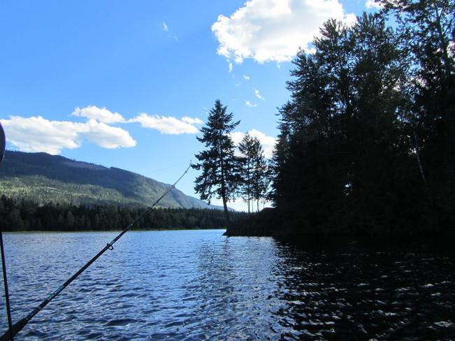 Perfect fishing Cherryville, British Columbia Canada
