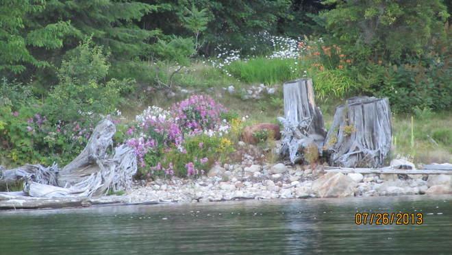 natures garden Cherryville, British Columbia Canada
