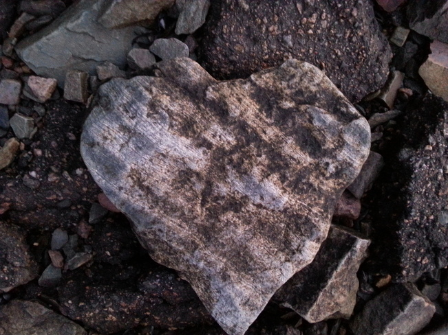 Rock That Looks Like A Heart Glovertown, Newfoundland and Labrador Canada