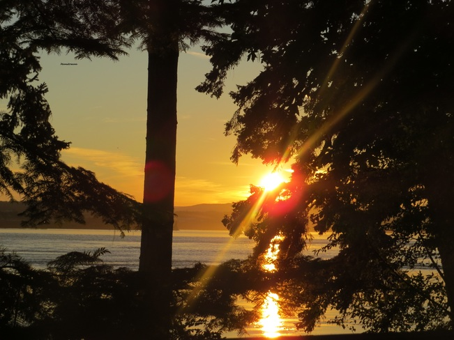 April Point Sunset Campbell River, British Columbia Canada