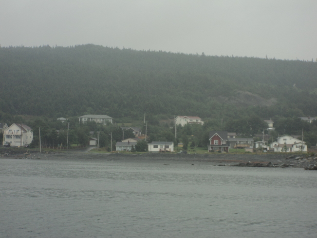 The Carbonear Day Boat ride Carbonear, Newfoundland and Labrador Canada