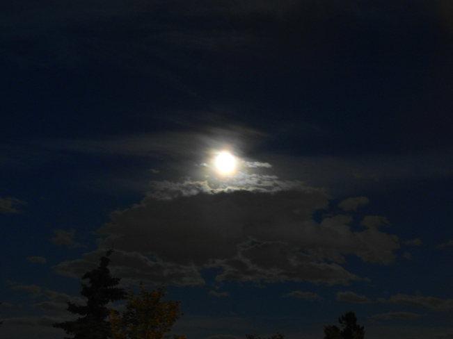 magic is coming.Blue full moon the 20th Calgary, Alberta Canada