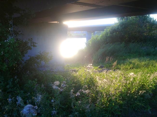 sun rays under bishop bridge Winnipeg, Manitoba Canada