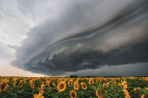 4b. Shelf cloud