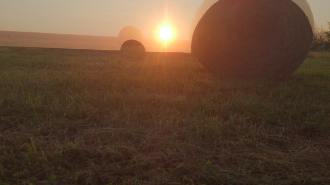 Hay where watching the Wolfville Sunrise Wolfville, Nova Scotia Canada