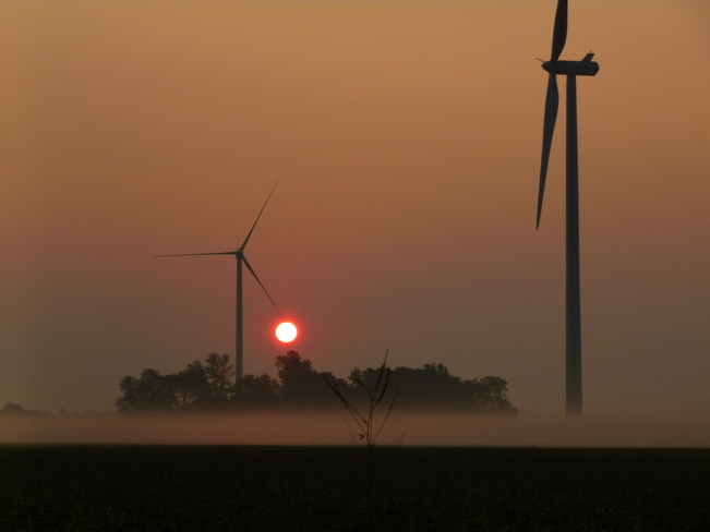 Sun Rising Through the Fog Port Dover, Ontario Canada