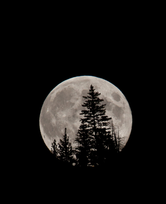 Full Moon in BC