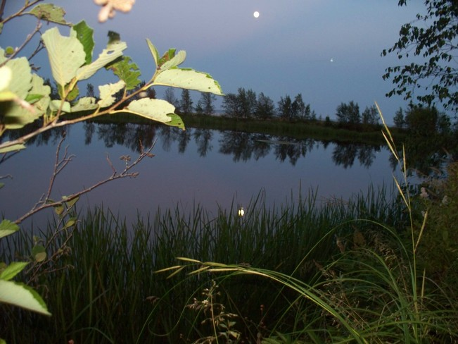 moon on the water Rexton, New Brunswick Canada