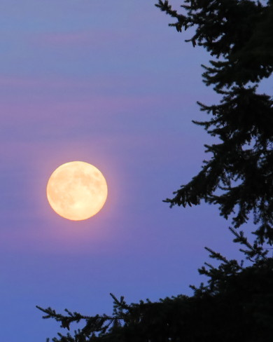 full moon Campbell River, British Columbia Canada