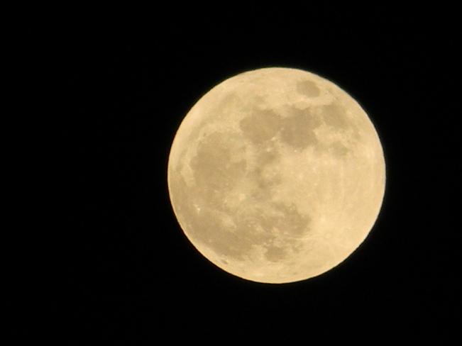 full moon Victoria, British Columbia Canada