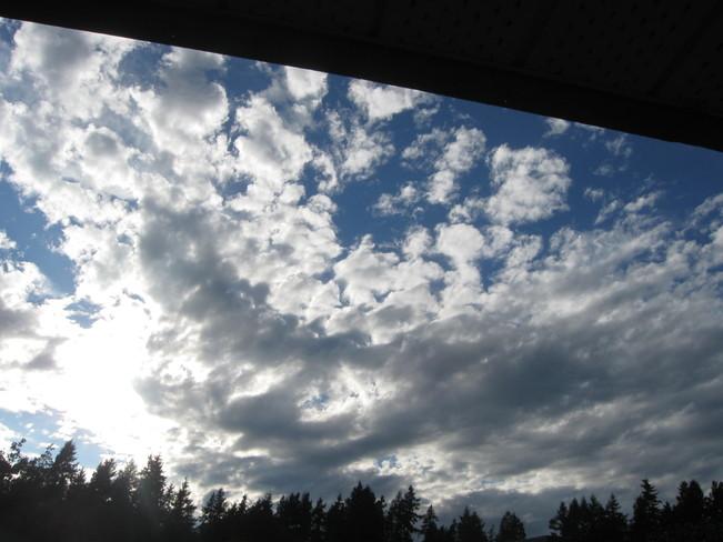 brightening up Surrey, British Columbia Canada