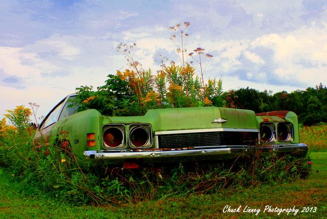 Flower car Amherst, Nova Scotia Canada