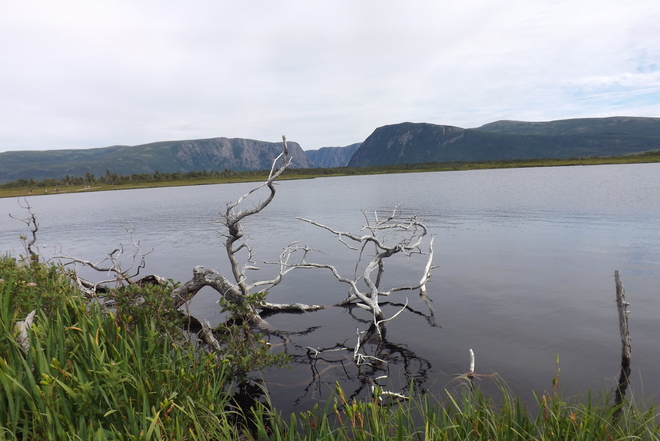 Trail into Western Brook Pond Rocky Harbour, Newfoundland and Labrador Canada
