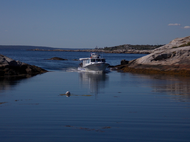 Just returning from a large day on the water Peggy's Cove, Nova Scotia Canada