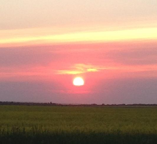 Grande Prairie sunset Grande Prairie, Alberta Canada