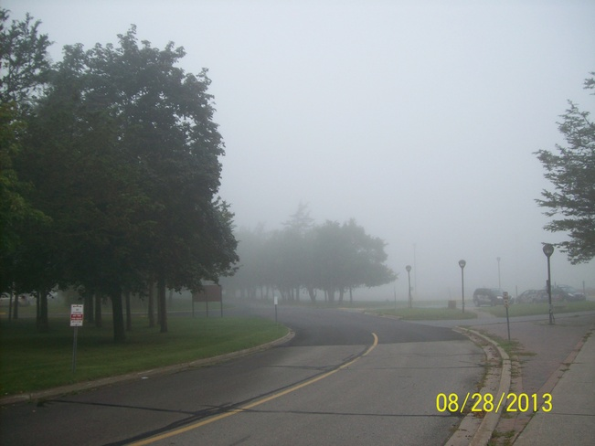 Foggy Weather outside Loyalist College Belleville, Ontario Canada