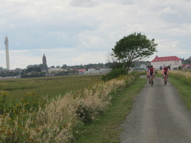 Lots of activity on the Dieppe Marsh Trail Moncton, New Brunswick Canada