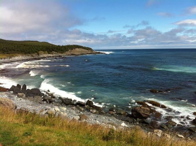 after the rain Cape Broyle, Newfoundland and Labrador Canada