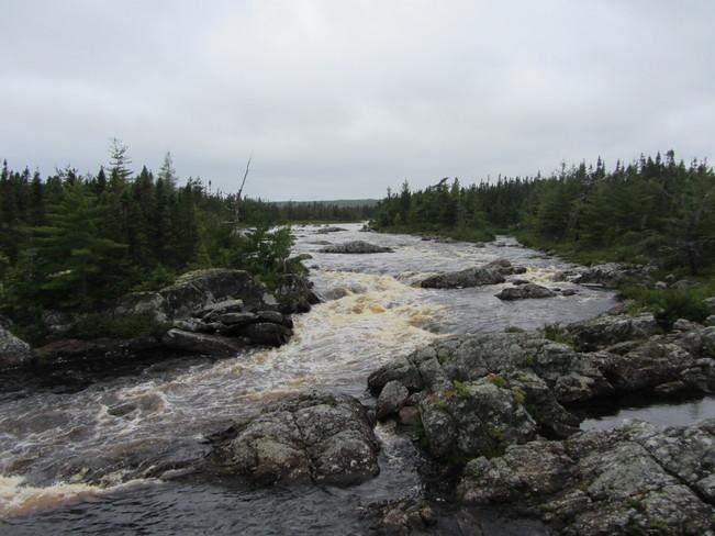 Terra Nova River Terra Nova, Newfoundland and Labrador Canada
