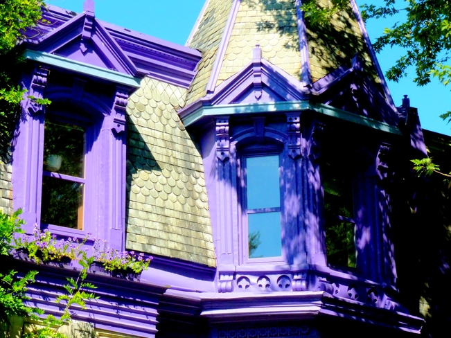 The Purple House Montréal, Quebec Canada