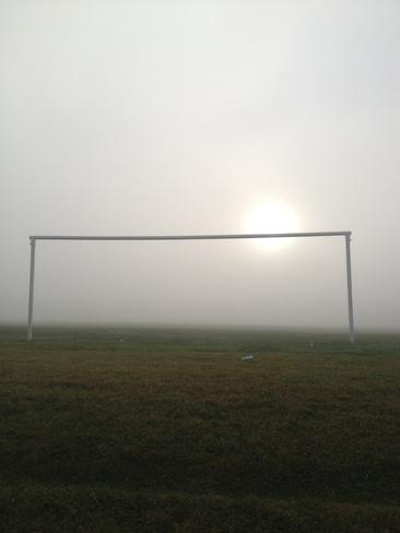 fog Calgary, Alberta Canada