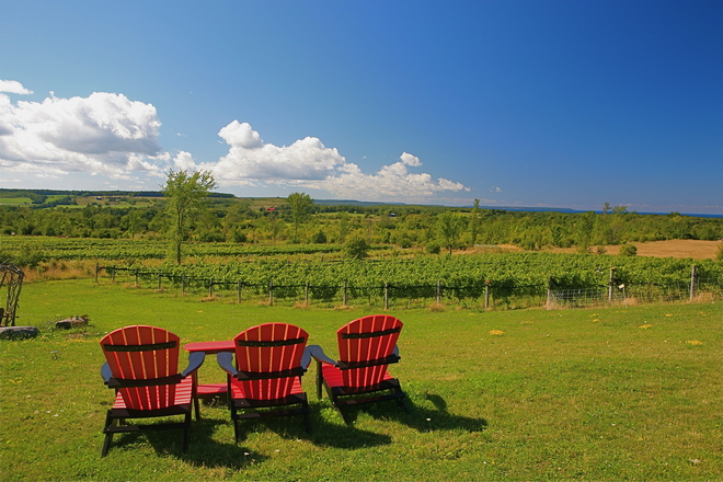 Chairs for Wine Tasting at Coffin Ridge Meaford, Ontario Canada