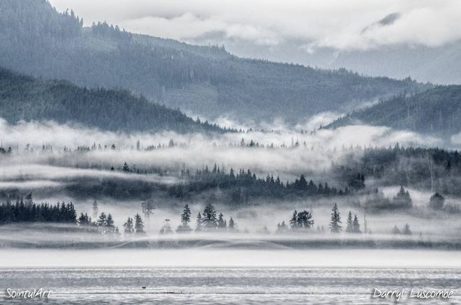 Misty morning Sointula, British Columbia Canada
