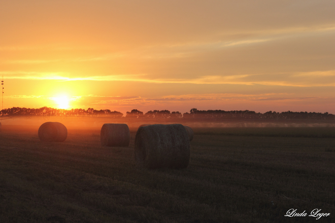 Bales In The Mist Carberry, Manitoba Canada