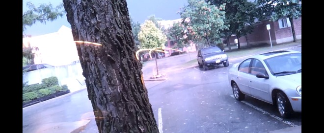 Tree gets struck by lightning! London, Ontario Canada