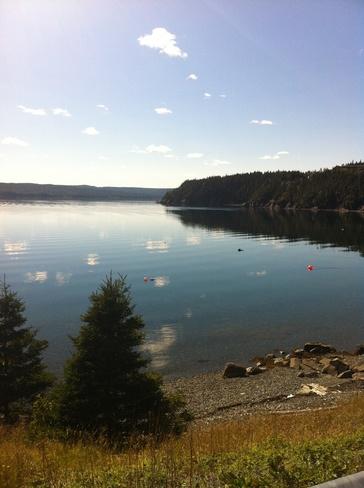Lady Cove Random Island Clarenville-Shoal Harbour, Newfoundland and Labrador Canada